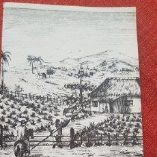 Cajas de Puros: CATALOGO CAJAS PUROS HABANOS MONTECRISTO BY CUBATABACO. Lote 182568767