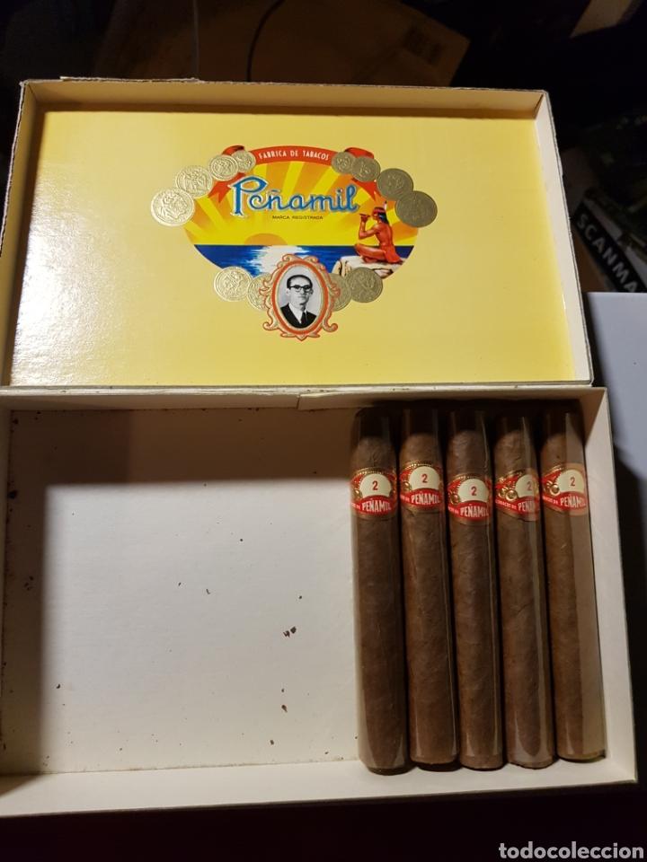 Cajas de Puros: Caja de puros peñamil n°2 5 puros en el interior - Foto 3 - 182900543