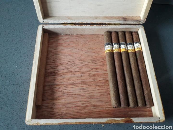 Cajas de Puros: Caja de puros cubanos Cohiba Panetelas 5 puros - Foto 2 - 183608546