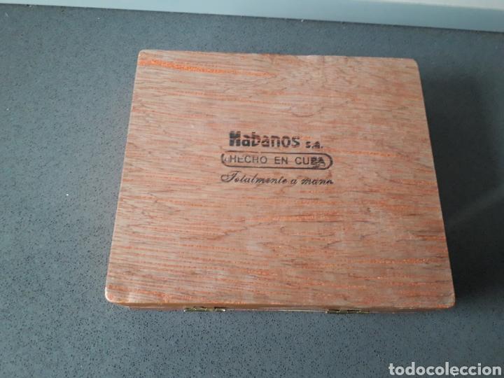 Cajas de Puros: Caja de puros cubanos Cohiba Panetelas 5 puros - Foto 3 - 183608546