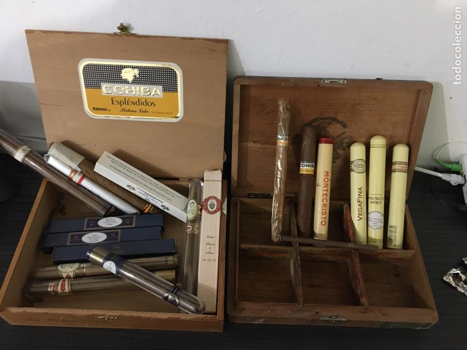 LOTE CAJAS DE PUROS Y PUROS COHIBA, MONTECRISTO, TROYA... HABANA CUBA (Coleccionismo - Objetos para Fumar - Cajas de Puros)