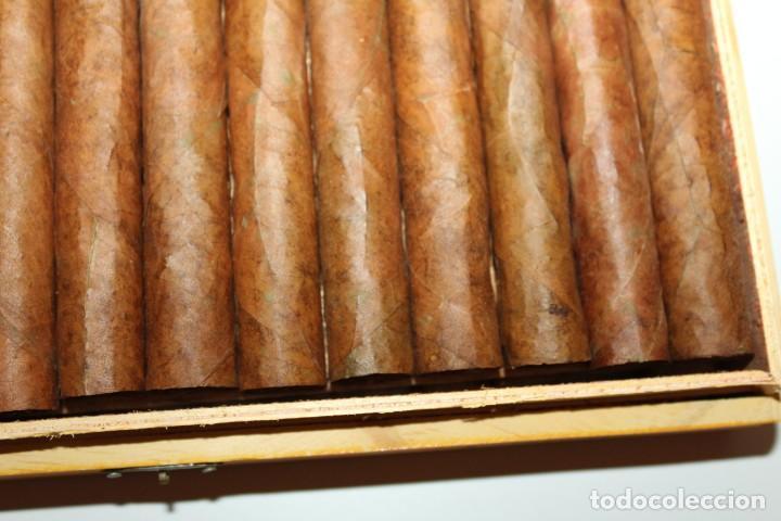 Cajas de Puros: CAJA DE PUROS COMPLETA - COHIBA ESPLENDIDOS - Foto 16 - 175110905