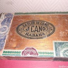 Cajas de Puros: CAJA DE PUROS FLOR DE CANO VACÍA COMO LAS FOTOS. Lote 185030046
