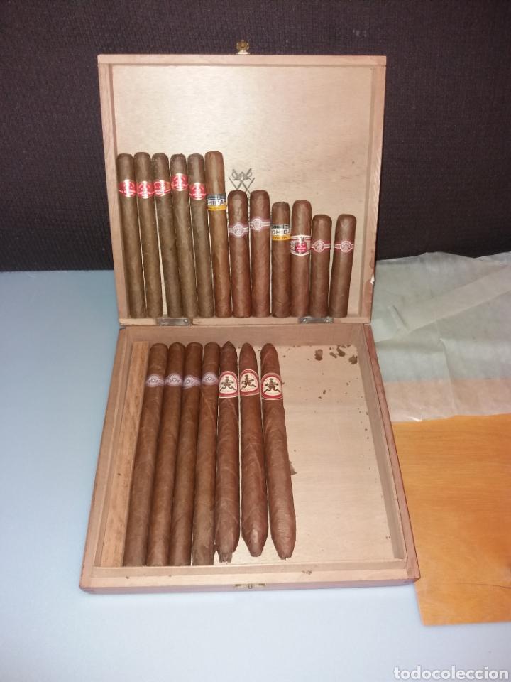 CAJA MONTECRISTO CON 19 PUROS HABANOS (Coleccionismo - Objetos para Fumar - Cajas de Puros)