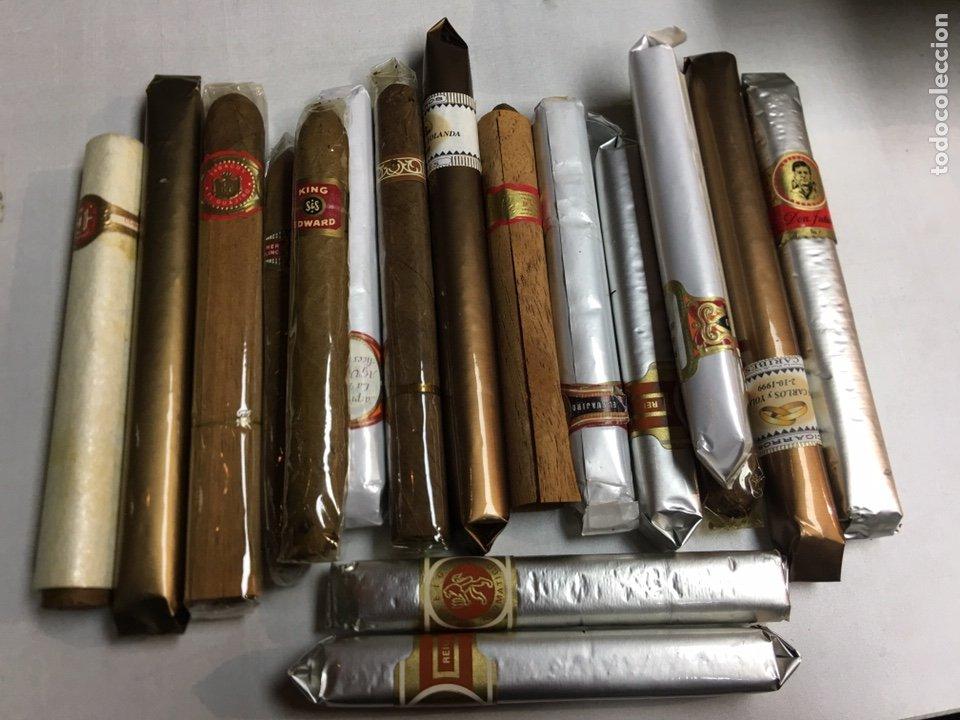 LOTE DE 17 PUROS VARIAS MARCAS (Coleccionismo - Objetos para Fumar - Cajas de Puros)