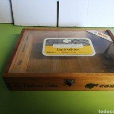 Cajas de Puros: CAJA DE PUROS DE MADERA COHIBA ESPLENDIDOS. Lote 191141296