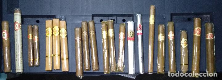 LOTE PUROS:DAVIDOFF GENEVA,DON JULIÁN,ALVAROS,MONTECRUZ,TROYA,ISLEÑOS,FLOR DE CANO,LARRAÑAGA,LA FAMA (Coleccionismo - Objetos para Fumar - Cajas de Puros)