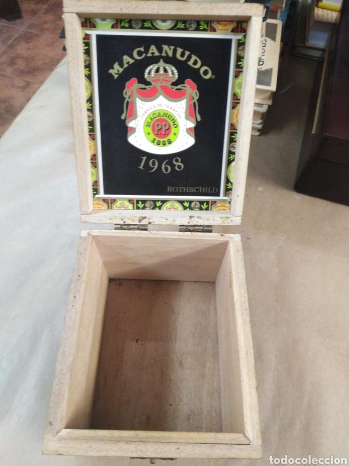 Cajas de Puros: Caja de puros macanudo - Foto 6 - 192320815