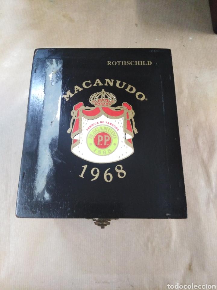 CAJA DE PUROS MACANUDO (Coleccionismo - Objetos para Fumar - Cajas de Puros)