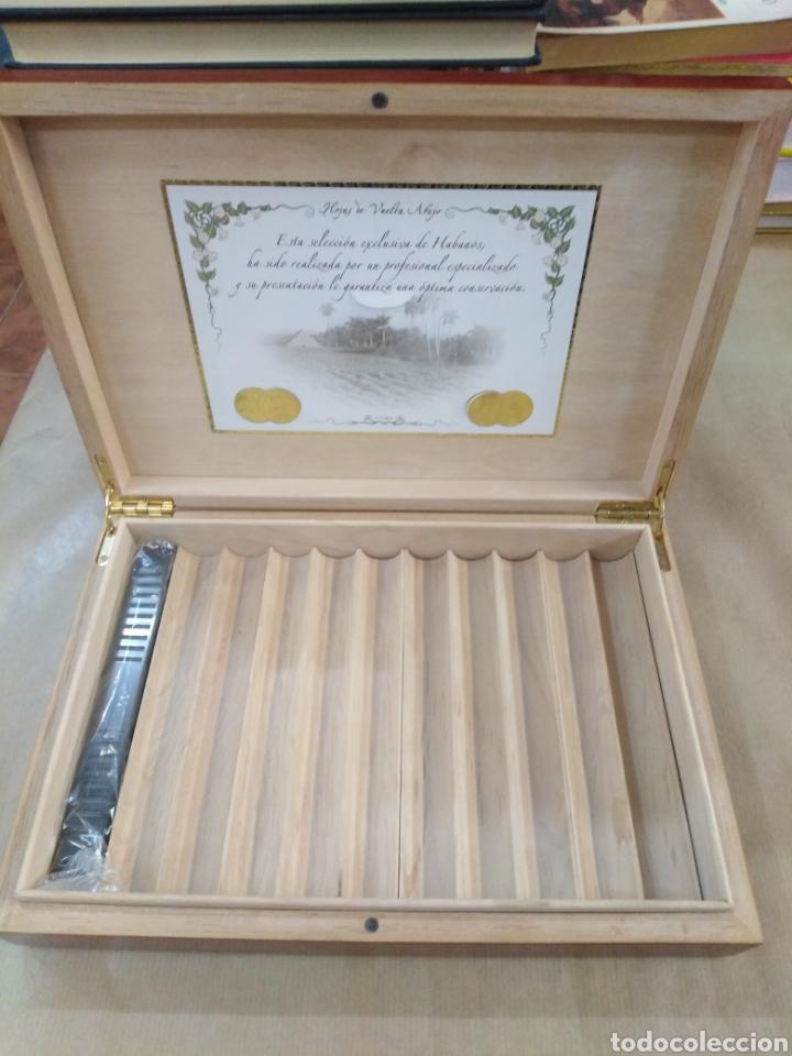 Cajas de Puros: Caja de cedro para puros, muy bonita de la casa hojas de vuelta abajo. Cuba. - Foto 2 - 192323243
