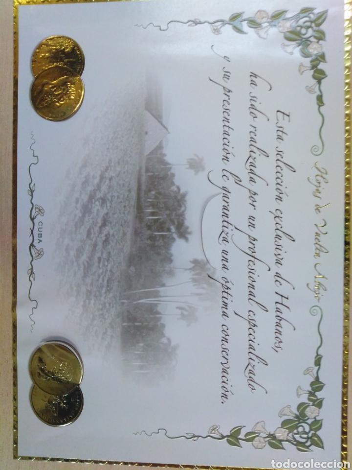 Cajas de Puros: Caja de cedro para puros, muy bonita de la casa hojas de vuelta abajo. Cuba. - Foto 4 - 192323243