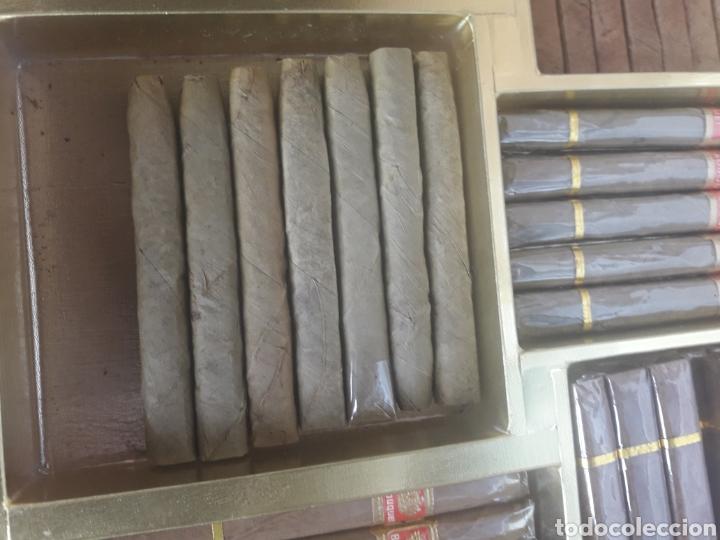 Cajas de Puros: Antigua caja cigarrera, Grand Choix Cigarrillos Corona - Foto 7 - 192715856