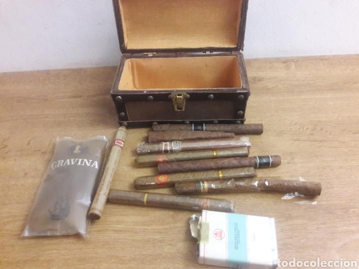 Cajas de Puros: cofre con puros y tabaco - Foto 5 - 193861655