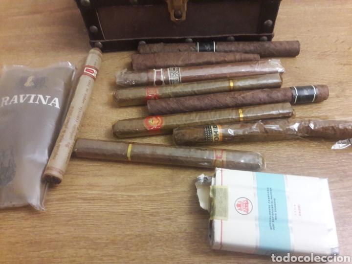 Cajas de Puros: cofre con puros y tabaco - Foto 6 - 193861655