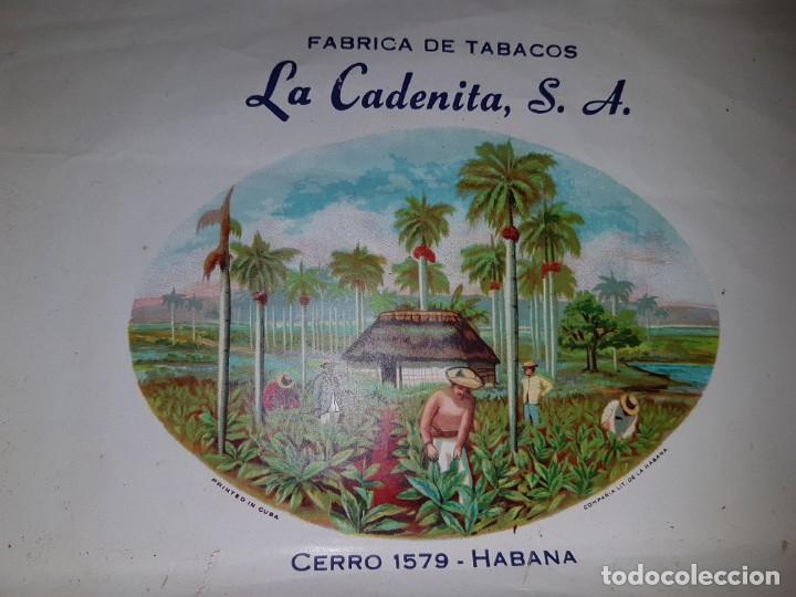 Cajas de Puros: Caja de puros vacía - La Cadenita - Habana - Cuba - Foto 3 - 194198547