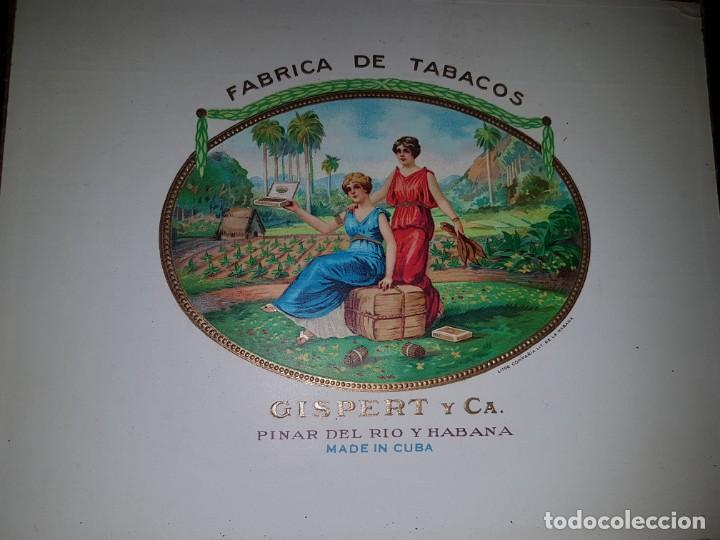Cajas de Puros: Caja de puros vacía - Gispert - Pinar del Rio - Habana - Foto 3 - 194199085