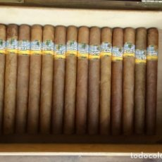 Cajas de Puros: 14 HABANOS COHIBA 17,5 CM. Lote 194315535