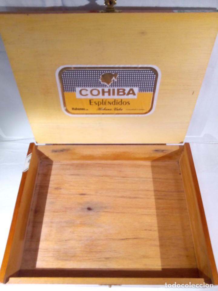 Cajas de Puros: CAJA COHIBA ESPLENDIDOS - Foto 3 - 194341418