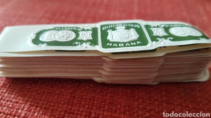 Cajas de Puros: 50 anillas vitolas de puros Ramon allones seleccion de lujo habana pre embargo - Foto 2 - 195367665