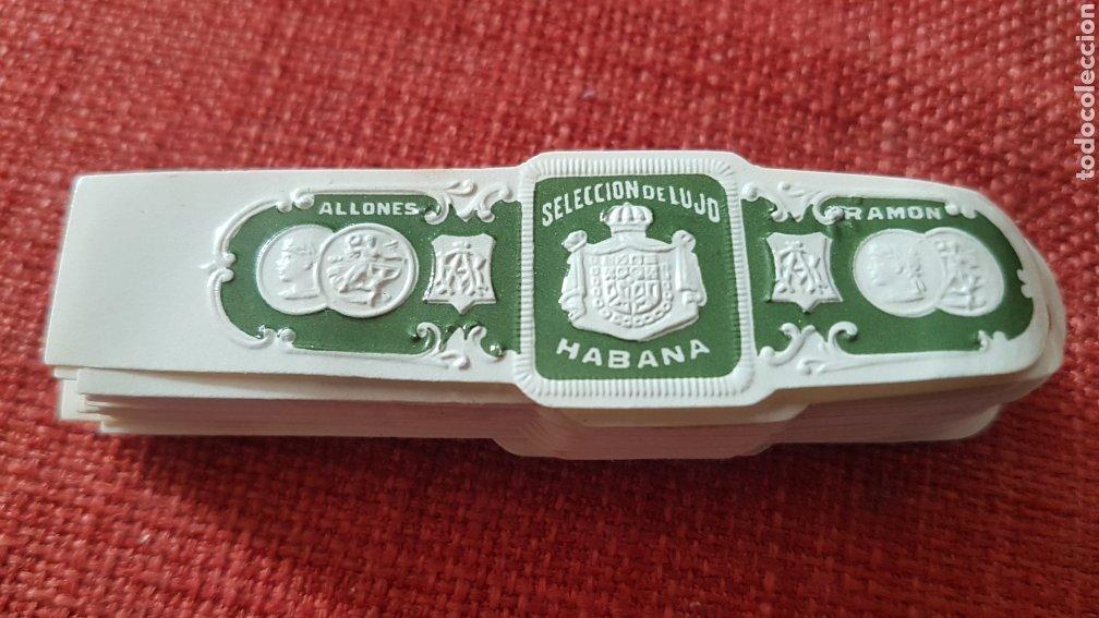 50 ANILLAS VITOLAS DE PUROS RAMON ALLONES SELECCION DE LUJO HABANA PRE EMBARGO (Coleccionismo - Objetos para Fumar - Cajas de Puros)