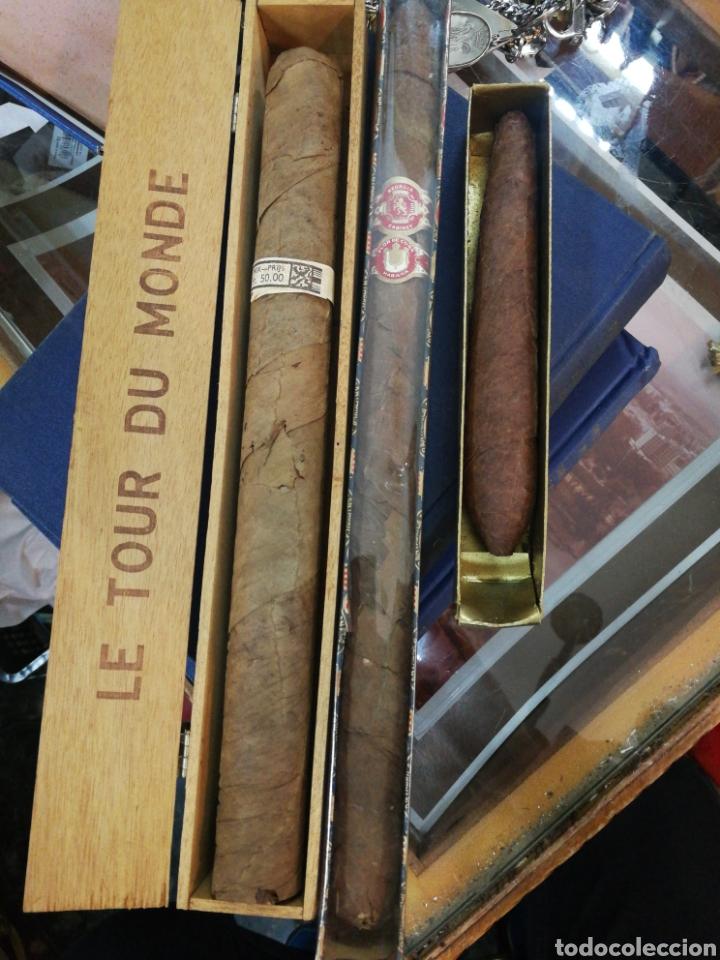 LOTE DE PUROS GIGANTES. (Coleccionismo - Objetos para Fumar - Cajas de Puros)