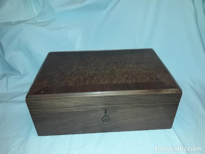 Cajas de Puros: Elegante caja de puros Humidificador madera de gran calidad de Olivo o Nogal - Foto 13 - 195974308