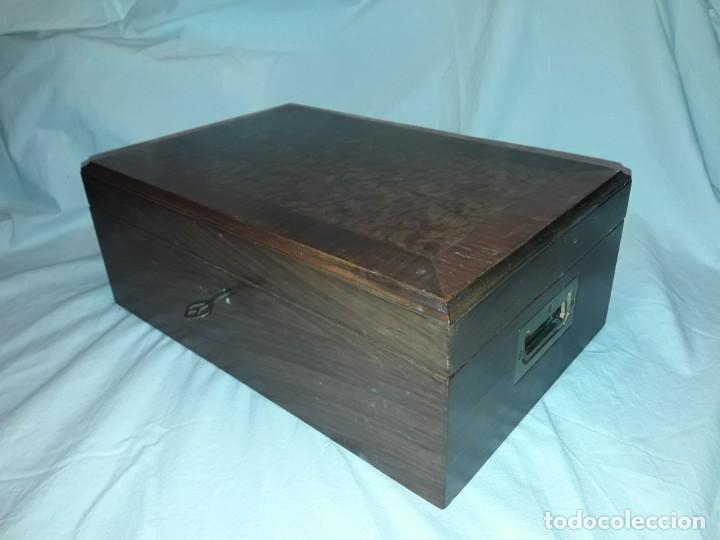 Cajas de Puros: Elegante caja de puros Humidificador madera de gran calidad de Olivo o Nogal - Foto 2 - 195974308
