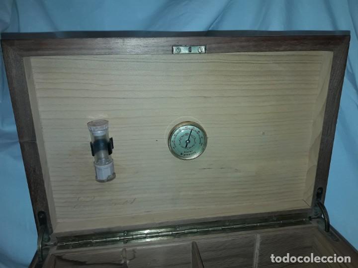 Cajas de Puros: Elegante caja de puros Humidificador madera de gran calidad de Olivo o Nogal - Foto 8 - 195974308