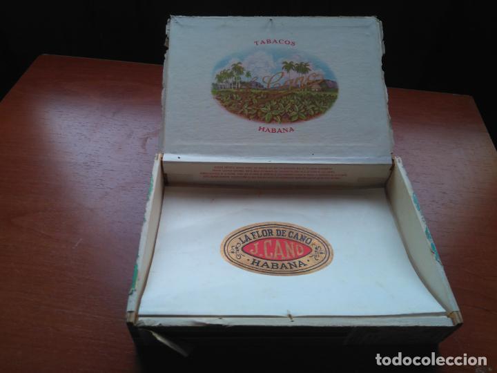 Cajas de Puros: LOTE DE 10 ANTIGUAS CAJAS DE PUROS Y PUROS - VEA LAS FOTOGRAFIAS - Foto 22 - 203109497