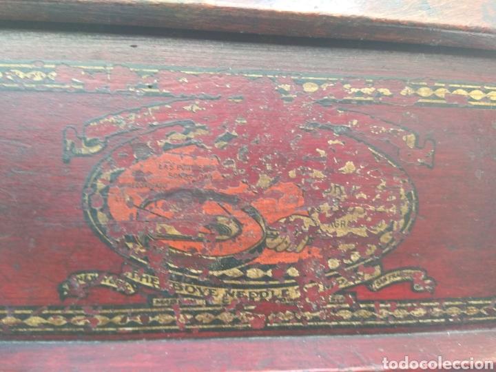 Cajas de Puros: Caja de Puros - Purera Tipo Expositor - Foto 30 - 101132618