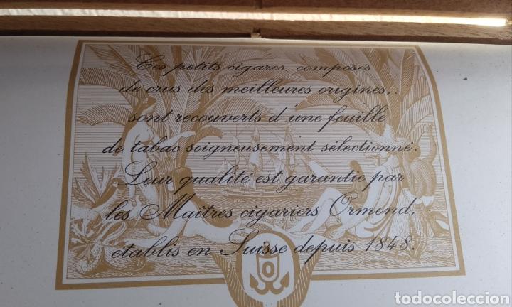 Cajas de Puros: Caja con 100 puritos - Foto 4 - 204983925