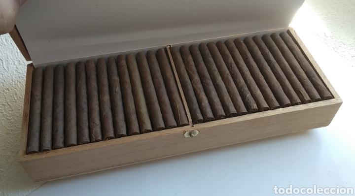 Cajas de Puros: Caja con 100 puritos - Foto 5 - 204983925