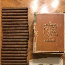 Cajas de Puros: HIJA DE CABAÑAS Y CARBAJAL Y CÍA - COLOSOS GORDOS - PRE-EMBARGO - CAÑA PUROS , CIGAR BOX. Lote 222722091