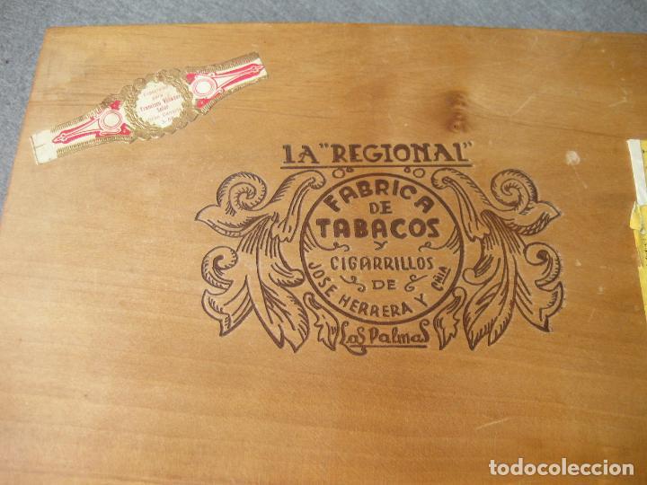 Cajas de Puros: CAJA CON 12 PUROS DE LA FÁBRICA DE TABACOS Y CIGARRILLOS DE JOSÉ HERRERA LA REGIONAL. LAS PALMAS - Foto 4 - 246136030