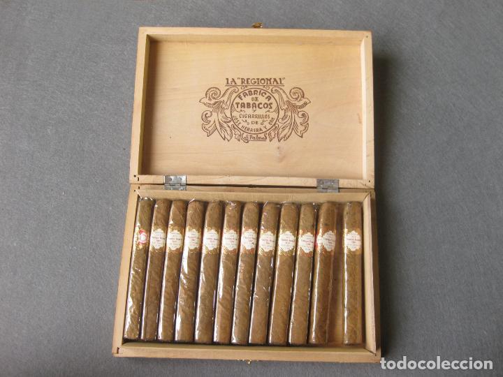 Cajas de Puros: CAJA CON 12 PUROS DE LA FÁBRICA DE TABACOS Y CIGARRILLOS DE JOSÉ HERRERA LA REGIONAL. LAS PALMAS - Foto 5 - 246136030