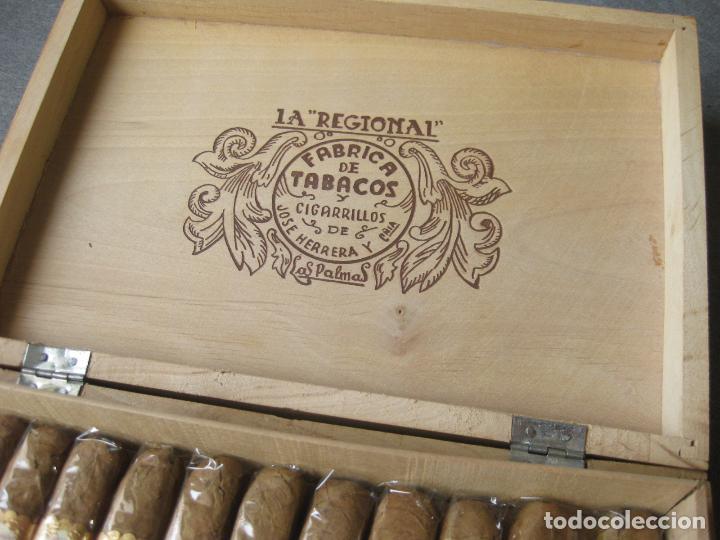Cajas de Puros: CAJA CON 12 PUROS DE LA FÁBRICA DE TABACOS Y CIGARRILLOS DE JOSÉ HERRERA LA REGIONAL. LAS PALMAS - Foto 6 - 246136030