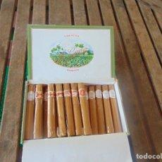 Cajas de Puros: CAJA CON 19 PUROS HABANOS PETIT CORONAS LA FLOR DEL CANO HECHO EN CUBA ( SON DE BODA). Lote 256022010