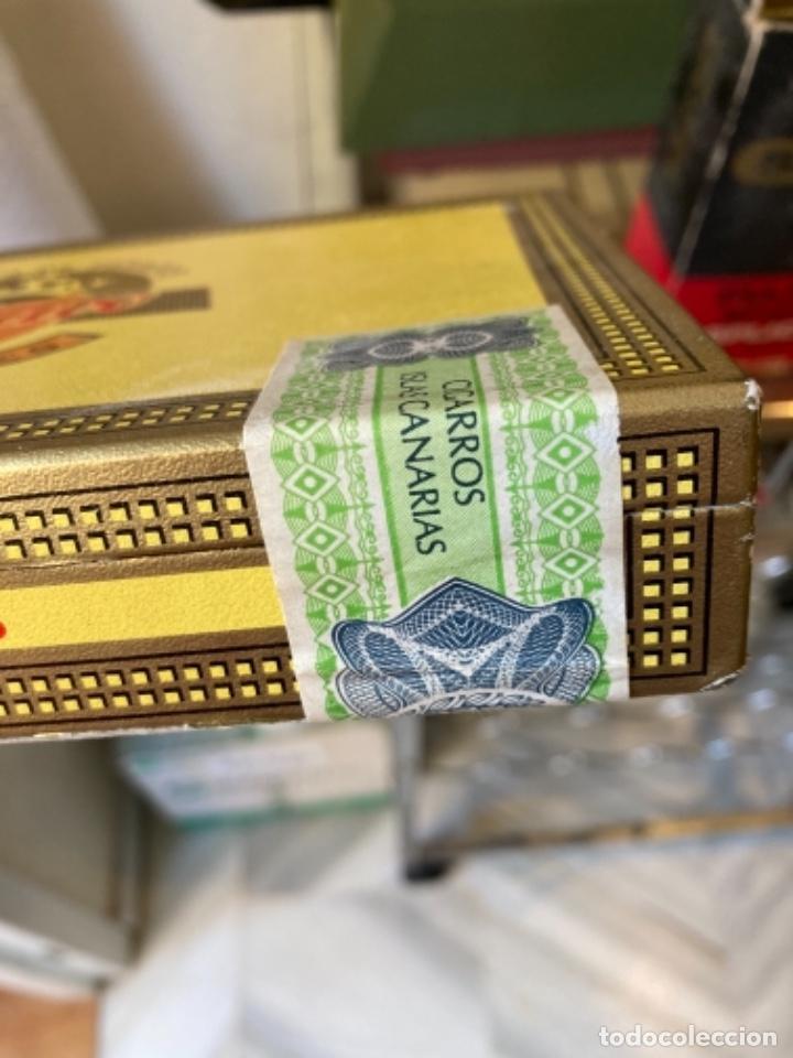 Cajas de Puros: Caja de puros antigua, sin abrir - Foto 4 - 261157825