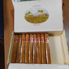 Cajas de Puros: ANTIGUA CAJA PUROS.TABACOS.HABANOS.CUBA.LA FLOR DE CANO.PETIT CORONAS.9 UNIDADES.. Lote 264275352