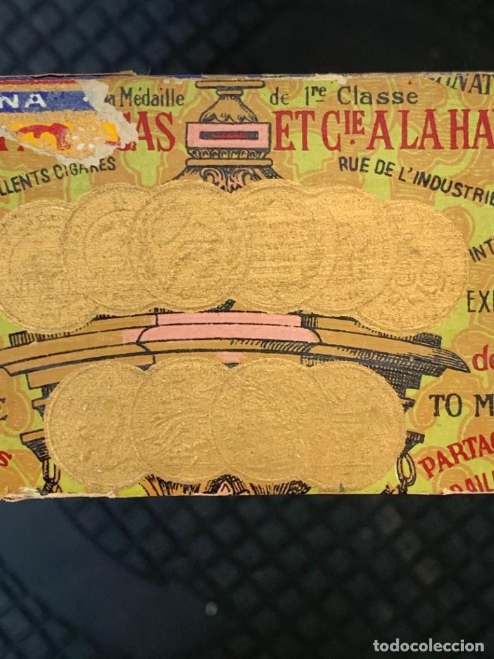 Cajas de Puros: CAJA FLOR TABACOS PARTAGAS Y Cª HABANA CIGARROS PUROS MADE IN HABANA CUBA SERIE L PPIO S XX - Foto 20 - 269104153