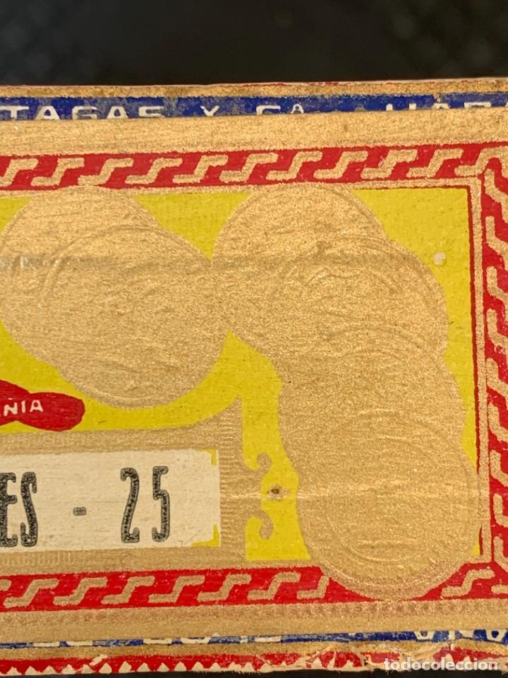 Cajas de Puros: CAJA FLOR TABACOS PARTAGAS Y Cª HABANA CIGARROS PUROS MADE IN HABANA CUBA SERIE L PPIO S XX - Foto 26 - 269104153