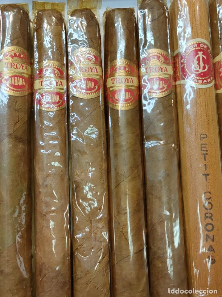 Cajas de Puros: Caja de Puros Monte Cristo con 25 puros distintas marcas mayoría Habana - Foto 5 - 273068453