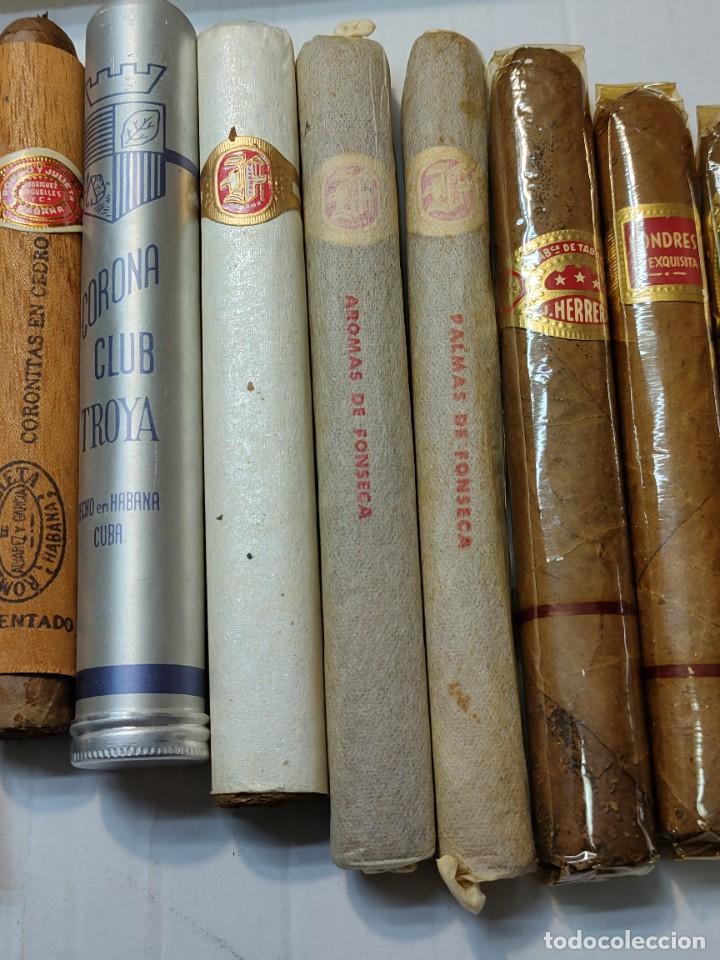 Cajas de Puros: Caja de Puros Monte Cristo con 25 puros distintas marcas mayoría Habana - Foto 7 - 273068453