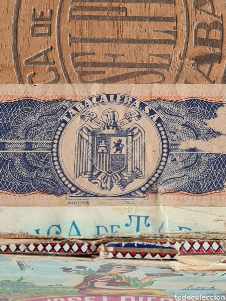 Cajas de Puros: Caja vacía Fábrica Tabacos Puros Habanos José L. Piedra - Habana Cuba - Cigars - Foto 5 - 278035383