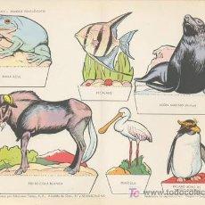 Coleccionismo Recortables: PARQUE ZOOLOGICO. MEDIDA: 29X40 CM. EDICION: TORAY, 1962. Lote 16871476