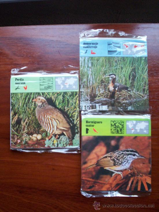 COLECCIÓN DE 72 FICHAS SAFARI DE ANIMALES NUEVAS GRATISFILM PHOTOCOLOR CLUB-SIN ABRIR-1978 (Coleccionismo - Recortables - Animales)