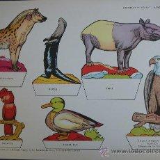 Coleccionismo Recortables: RECORTABLES TORAY - PARQUE ZOOLOGICO Nº 90 - ORIGINAL 1962. Lote 27104185