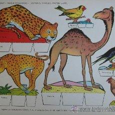 Coleccionismo Recortables: RECORTABLES TORAY - PARQUE ZOOLOGICO Nº 113 - ORIGINAL 1962. Lote 27104197