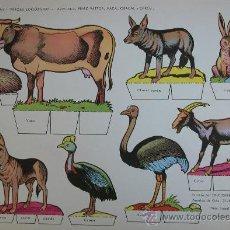 Coleccionismo Recortables: RECORTABLES TORAY - PARQUE ZOOLOGICO Nº 115 - ORIGINAL 1962. Lote 27130816