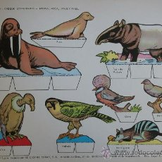 Coleccionismo Recortables: RECORTABLES TORAY - PARQUE ZOOLOGICO Nº 120 - ORIGINAL 1962. Lote 27104193